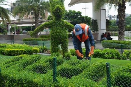 gardening-service-500x500